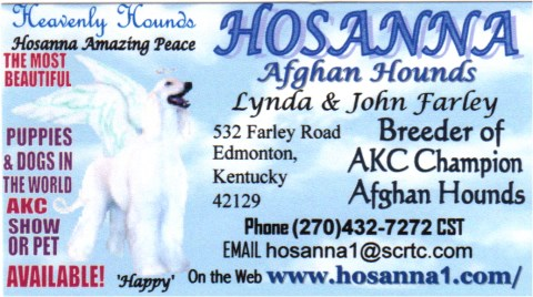 Hosanna Afghan Hounds business card, name, address, phone, email. web address