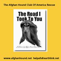 graphic link to Afghan Hound Club of America Rescue Website